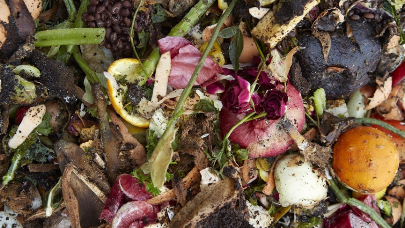 Learn how to compost in Queens.