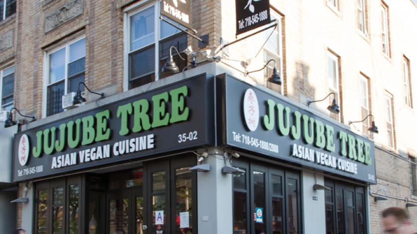 Jujube Tree in Astoria, Queens New York.