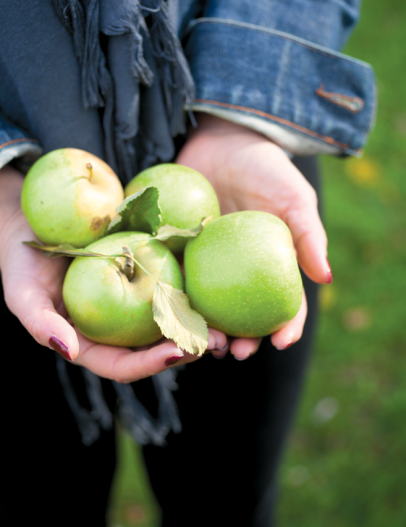 The Newton Pippin apple was initially grown in Queens.