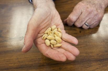 Elmhurst Milked is a nut milk alternative started in Jamaica, Queens.