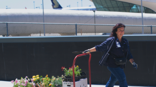 Farmer Bradley Pearce Fleming joins JetBlue volunteers who help maintain Terminal 5's 24,000-square-foot of rooftop farm.