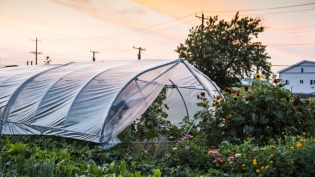 Edgemere Farms in Rockaway, Queens
