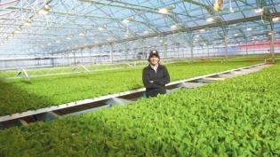 Gotham Greens founder Viraj Puri
